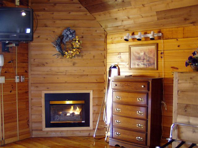 Cabin Hot Tub: Gas fireplace. Bath has toilet, sink and tub/shower combination.