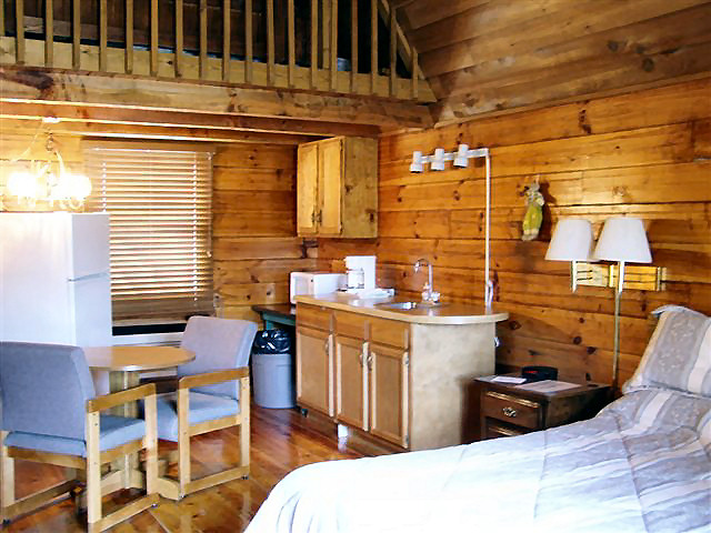 Cabin Hot Tub: efficiency kitchen-refrigerator, coffee maker, microwave, dishes, NO STOVE.