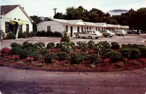 Vintage Postcard Dock's Motel circa 1950
